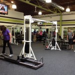Fitness Plus. Equipment, trainers, clients, all in action.